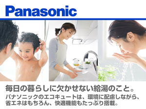 eq_panasonicc_300_255